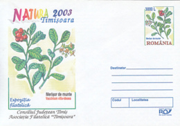 89518- LINGONBERRY, FRUITS, PLANTS, COVER STATIONERY, 2003, ROMANIA - Frutta