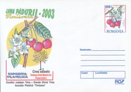 89521-WILD CHERRY, FOREST'S MONTH, FRUIT, PLANTS, COVER STATIONERY, 2003, ROMANIA - Frutta
