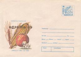 89543- WHEAT, MAIZE, APPLE, MUSHROOMS, PLANTS, COVER STATIONERY, 1989, ROMANIA - Pilze
