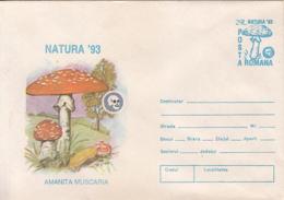 89546- MUSHROOMS, PLANTS, COVER STATIONERY, 1993, ROMANIA - Pilze