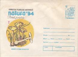 89548- MUSHROOMS, PLANTS, COVER STATIONERY, 1994, ROMANIA - Pilze