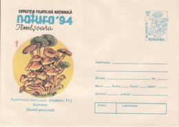 89549- MUSHROOMS, PLANTS, COVER STATIONERY, 1994, ROMANIA - Pilze