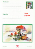 89553- BIRDS, MONEY, CLOVER, MUSHROOMS, PLANTS, POSTCARD STATIONERY, 2001, ROMANIA - Pilze
