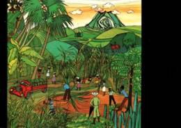 CPM - MARTINIQUE - LA CANNAIE - ILLUSTRATION M.PELZ ... - Edition Schoelcher - Martinique
