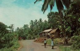CPM - MARTINIQUE - La Campagne Martiniquaise ... - Edition Dexter Press - Martinique