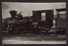 Train Old Steam Locomotive ZAGREB Old Photo 10x6 Cm #30904 - Treni