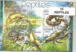 """Lot 10 Blocs Thematique """" Reptiles"""" - Reptiles & Amphibians"""