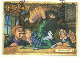 Harry Potter. La Naissance De Norbert (le Dragon) - Non Classificati