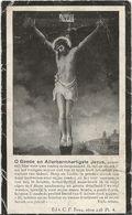 DP. JOANNA VAN DEN HEUVEL ° WEMMEL 1856- + AUDERGHEM 1929 - Religione & Esoterismo