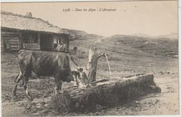 Hautes  Alpes  ? :  L '  Abreuvoir  , Vache - Frankreich