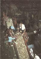 DOM TOM - Guyane - CAYENNE - Broyage De La Canne à Sucre à La Rhumerie Du Rorota - Rhum - Outre Me - Non Classificati