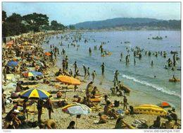 Carte Postale  83.  Les Sablettes  Mar Vivo Trés Beau Plan - France