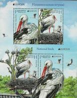 "BIELORRUSIA /BELARÚS /WEISSRUSSLAND - EUROPA 2019 -NATIONAL BIRDS.-""AVES -BIRDS -VÖGEL-OISEAUX""- HOJITA BLOQUE/BLOCK - 2019"