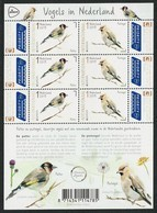 "HOLANDA/ PAISES BAJOS/ NEDERLAND/ NETHERLANDS- EUROPA 2019 -NATIONAL BIRDS.-""AVES - BIRDS - VÖGEL -OISEAUX""- HOJA BLOQUE - 2019"