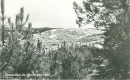 Ameland 1961; Groeten Uit De Amelander Alpen - Gelopen. (P.J. De Boer - Nes, Ameland) - Ameland