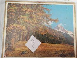CALENDRIER FRANCE 1965 COMPLET AVEC PLAN SEINE MARITIME DENT BLANCHE MONTAGNE - Calendari