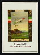 """2015 ITALIA """"CENTENARIO GRANDE GUERRA / CAPRONI CA 33"""" FOLDER ANNULLO 20.06.2015 (BORGO FAITI) - Pochettes"""