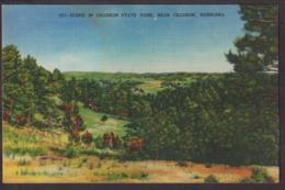 Postcard - USA - Circa 1940 - Scene In Chadron State Park - Non Circulee - A1RR2 - Autres