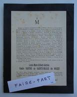 FAIRE-PART DECES 1889 RAPINE De STE-MARIE NOZET ALBIGNAC Flins 58-St-Saulge * - Avvisi Di Necrologio