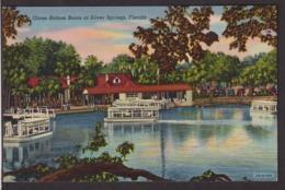 Postcard - USA - Circa 1940 - Glass-Bottom Boats - Non Circulee - A1RR2 - Silver Springs