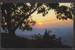 Postcard - USA - Circa 1960 - Shenandoah National Park - Non Circulee - A1RR2 - Etats-Unis