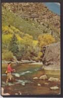 Postcard - USA - Circa 1960 - Fishing - Non Circulee - A1RR2 - Angelsport