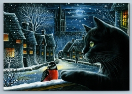 BLACK CAT N BULLFINCH Snow Winter City Night By Garmashova Russian New Postcard - Tierwelt & Fauna