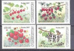 2007.Uzbekistan,  Wild Berries, 4v,   Mint/** - Uzbekistán