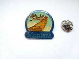 Beau Pin's ,  Montana , Renne , Wapiti , élan - Steden