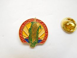 Beau Pin's , Golden Corn Of Ohio , USA , épi De Maïs - Steden