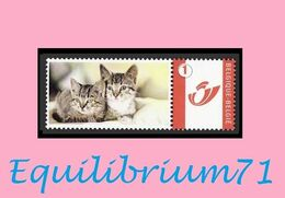 DUOSTAMP** / MYSTAMP** - Chat  / Kat / Katze  / Cat - Gatti