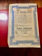 S.A.  LA  ZIBELINE  --------------- Part  Sociale - Industrie