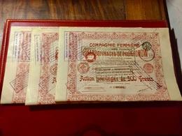 Cie  FERMIÈRE  Des  CHARBONNAGES  De  PROKHOROW --------- Lot  De  3  Actions  Privilégiées De  500 Frs - Russia