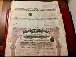 MOUNT  ELLIOT  , LIMITED  ------------- Lot  De  3  Certificats  D' Une  Action  D' Une £ - Miniere