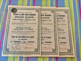Sté  De  CULTURE  De  CAOUTCHOUC  Et  CAFÉ  --------------- Lot  De  3  Titres  De  5  Actions  De. Capital - Agricoltura