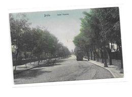 BRAILA : Caléa Victoriel Tramway - Romania