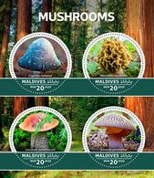 Maldives. 2020 Mushrooms. (0101a)  OFFICIAL ISSUE - Funghi