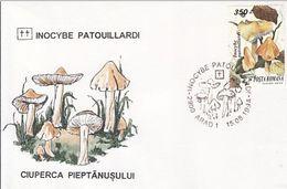 PLANTS, MUSHROOMS, SPECIAL COVER, 1994,ROMANIA - Funghi