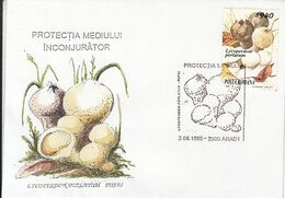 PLANTS, MUSHROOMS, ENVIRONMENT PROTECTION, SPECIAL COVER, 1995,ROMANIA - Funghi
