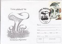 PLANTS, MUSHROOMS, FOREST MONTH, SPECIAL COVER, 1996,ROMANIA - Funghi