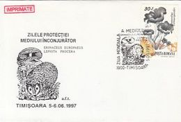 PLANTS, MUSHROOMS, HEDGEHOG, ENVIRONMENT PROTECTION, SPECIAL COVER, 1997,ROMANIA - Funghi
