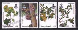 Swaziland 1996 Yvert 654-57, Flora. Trees & Fruits. Waterberry, Sycamore Fig, Stamvrug & Medlar - MNH - Swaziland (1968-...)