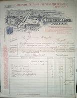 FATTURA STABILIMENTO ORTICOLO PISTOIA ANNO 1928 - Italien