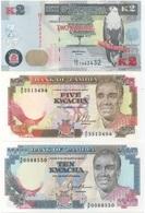 Zambie : Série De 3 Billets 2 - 5 - 10 Kwacha UNC - Zambia