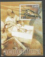CUBA 2001 CREBS, CUBA, S/S, MNH - Crostacei