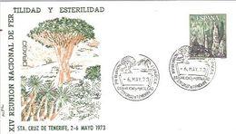 MATASELLOS 1973 SANTA CRUZ DE TENERIFE - 1931-Aujourd'hui: II. République - ....Juan Carlos I