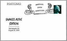 SNAKES ALIVE STATION - SERPIENTES. Sacramento CA 2003 - Snakes