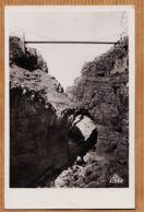 Alg109 → Etat Parfait CONSTANTINE Pont Suspendu SIDI M'CID Gorges Du RHUMEL 1950s PHOTO-AFRICAINES 20 Alger - Constantine