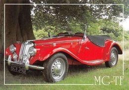 "MG-TF Automobile, Auto, Car, Transport ""Color Gloss"" - Autres"
