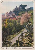 83, Bormes Les Mimosas, A Gauche, L'Eglise, Au Fond Le Château Des Seigneurs - Bormes-les-Mimosas